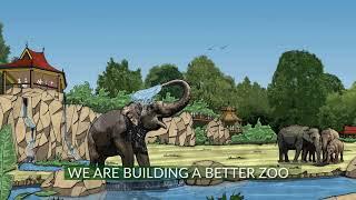 "Cincinnati Zoo ""More Home to Roam"" Campaign Video"