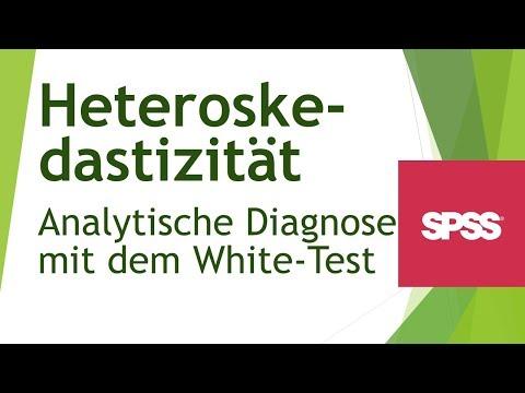 Heteroskedastizät erkennen -grafisch- Voraussetzung für Regression - Daten analysieren in SPSS (16)из YouTube · Длительность: 4 мин11 с