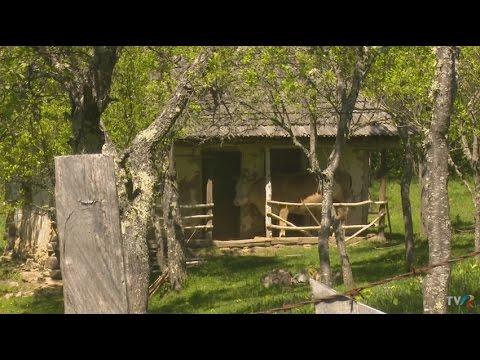 Muzeu al satului natural, în satul Odăi (@Exclusiv în România)