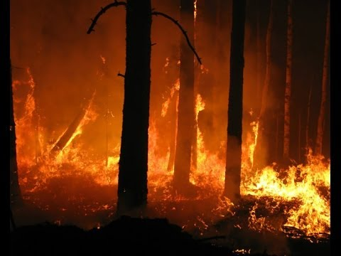 Scorched Earth : Wildfires burn out of control in Alaska and in Arizona (May 26, 2014)