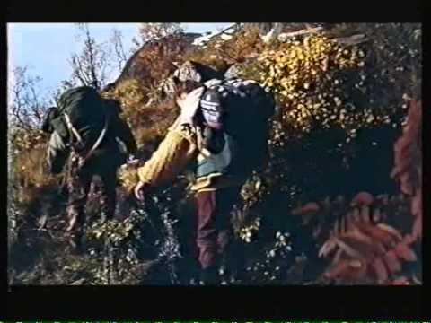 Villhesten 1994 Norsk tale VHS rip