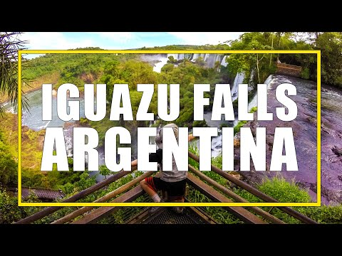 Monkeys, Waterfalls and Endless Nature, Exploring Iguazu Falls Argentina with Kids