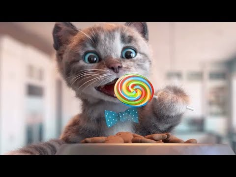 Play Fun Pet Kitten Care Kids Game - Little Kitten Preschool - Fun Learning Games For Children