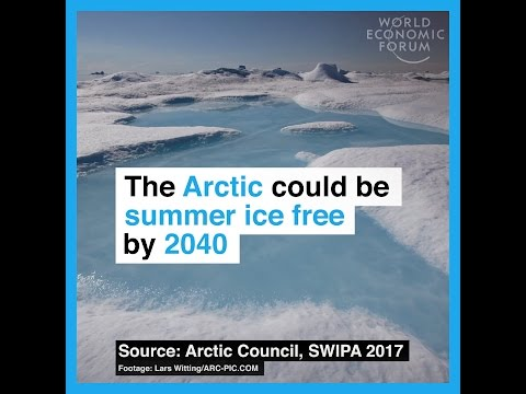 The Arctic could be summer ice free by 2040