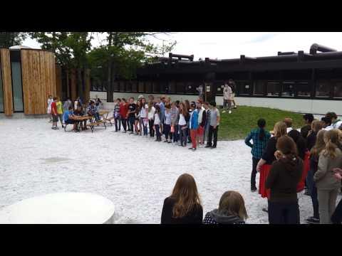 Oslo International School Lower Secondary Flashmob
