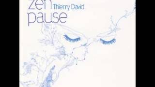 Real Music Album Sampler: Zen Pause by Thierry David