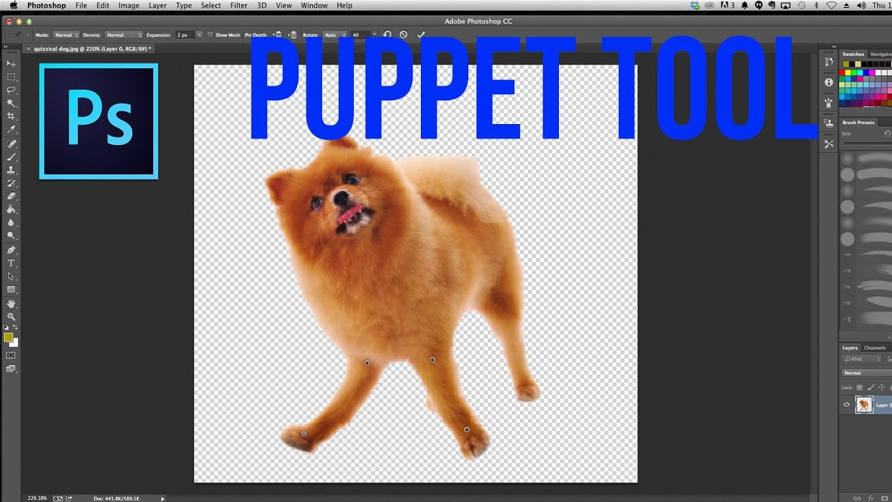 How to use the puppet warp tool in photoshop photoshop tutorial how to use the puppet warp tool in photoshop photoshop tutorial baditri Image collections