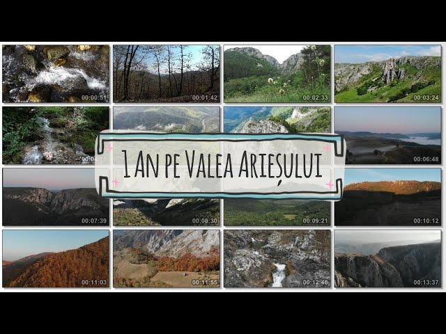 1 an pe Valea Arieșului