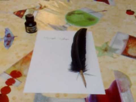 Writing Quill Pen Manuscript
