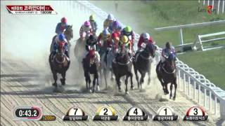 Korean Derby 2015 - Yeongcheon Ace