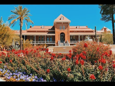 A Day in the Life of a College Student | University of Arizona