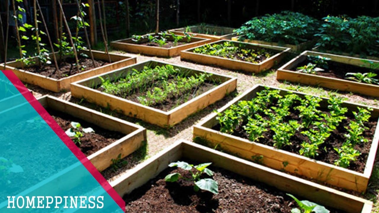 HAVE YOU LOOK THIS? 20+ Cheap Vegetable Garden Ideas That