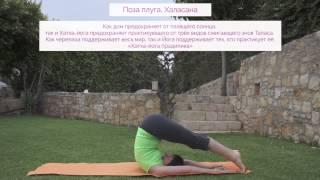 Видео-уроки Открытой йоги. Халасана(Видео-уроки Открытой йоги. Региональный центр в г.Сыктывкаре. Поза плуга - Халасана. Повествование о хатха..., 2015-08-12T18:21:25.000Z)