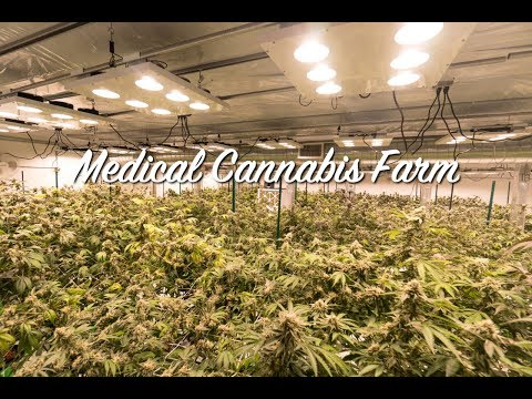 Justin Farms Legal Medical Facility | Pacific Light Concepts