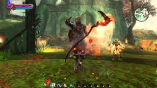 Kingdoms of Amalur_ Reckoning Weapons and Armor bundle DLC