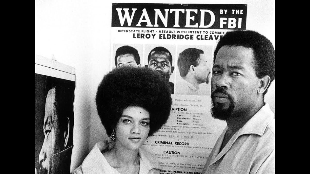 black panther organization essay A history of the black panther party, with original documents, described from a marxist perspective.