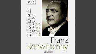 Symphony No 3 In E Flat Major Op 97 Rhenish I Lebhaft