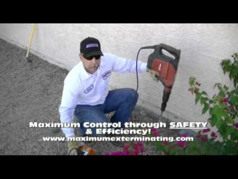Arizona Termite Control