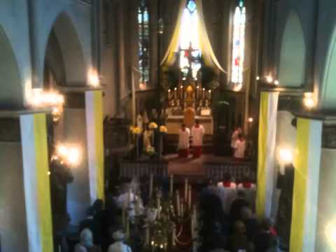 Sanctus & Benedictus Missa IV (organ, choir + congregation)
