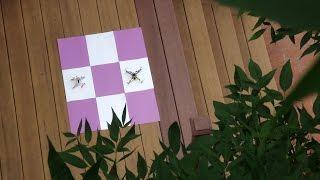 Backyard Drone Race