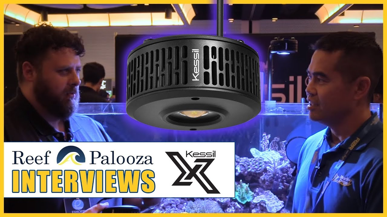 The A360X is Better Than Its Predecessor in Every Conceivable Way - David Lowry, Kessil Thumbnail