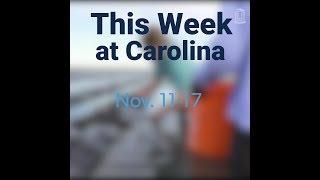 This Week at Carolina | Nov. 11-17