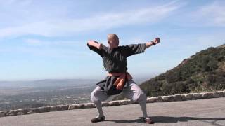 Repeat youtube video Master Shi Yan Yue Demonstrates Shaolin Tong Bei Quan 通背拳示範