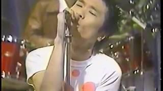 ブルドッグ - 近田春夫&ハルヲフォン (Haruo Chikada) 1978