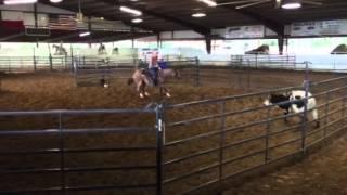 Roman- Jared Lesh cowhorses