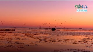 《錦繡中國》黑龍江·鸡西(1) 0110 | Fantastic China, Jixi, Heilongjiang Province Ep. 29 HD