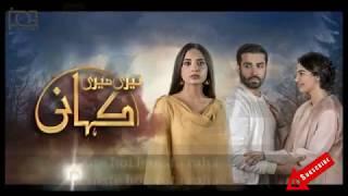 teri-meri-kahani-full-ost-song---hum-tv-drama