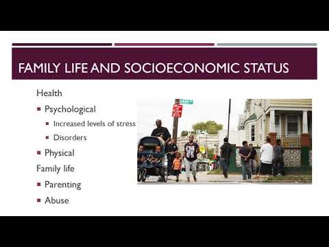 Diversity Workshop   Socioeconomic Status   David Vidal