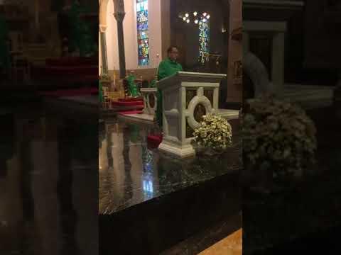 Miracle of Frank Duff - November 7, 2017 Holy Mass at the Manila Cathedral