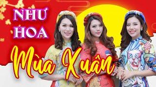 Như Hoa Mùa Xuân - Liveshow Xuân Phát Tài | Hoa Dương TV