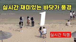 재미있는 실시간 바닷가풍경 1 ?Live in gwan…