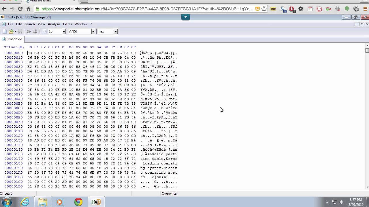 Using a Hex Editor
