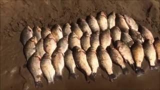 Как я съездил на рыбалку на Волгу