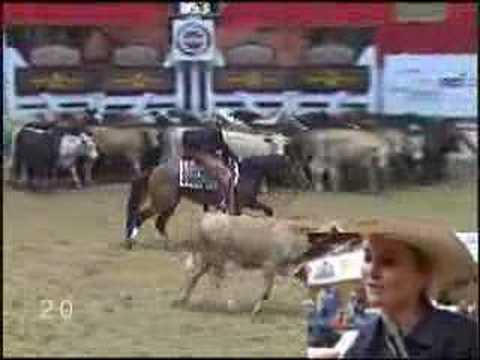 2007 NCHA Summer Cutting Amateur Derby