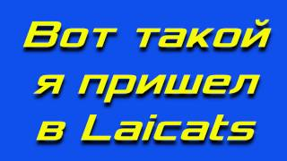 Стрижка шпица - секретная техника)
