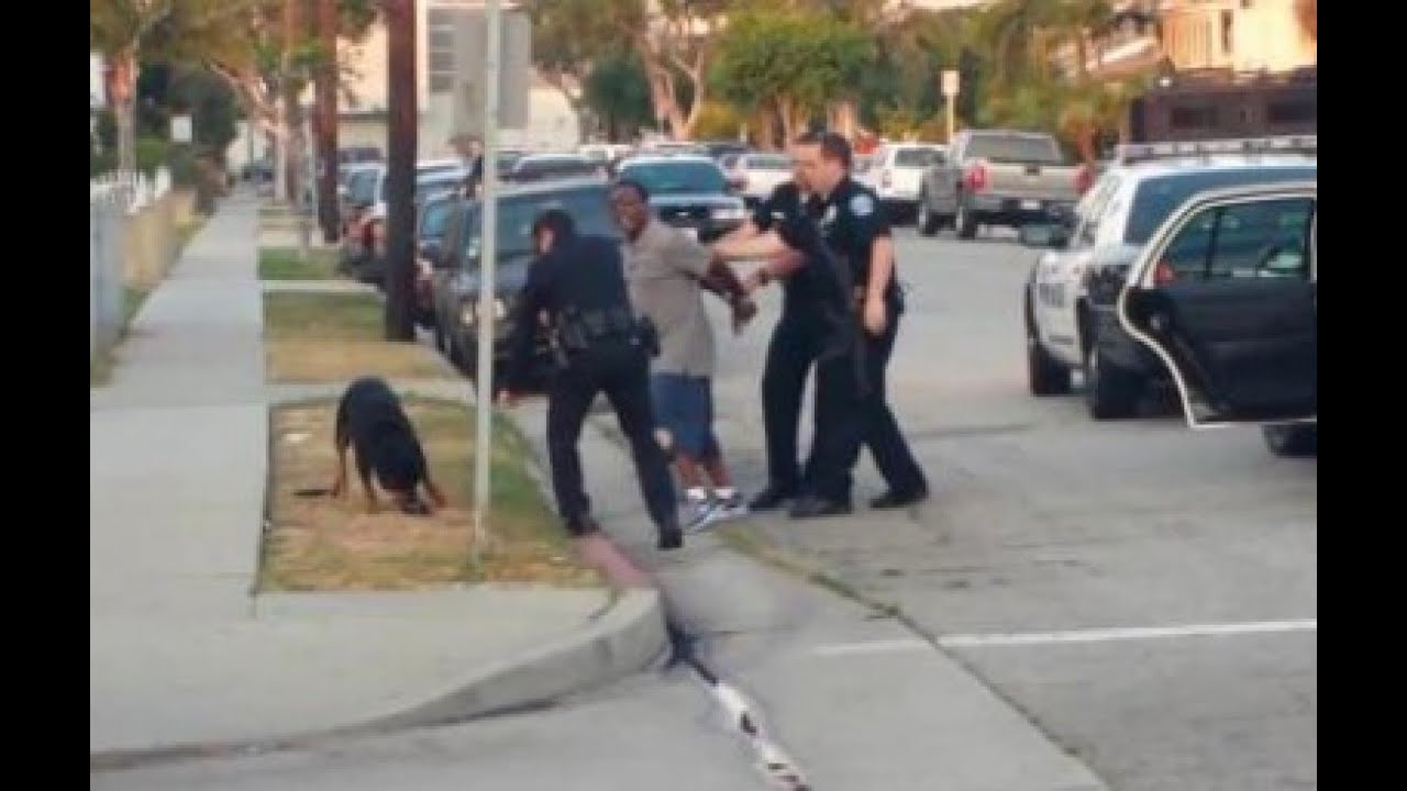"hawthorne police kill dog Hawthorne man charged with stomping 9-pound seth estrada allegedly yelled ""i killed my first dog"" when police officers responded to hawthorne police lt."