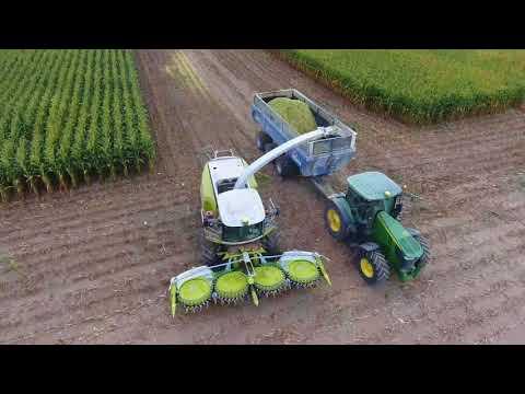 Corn Silage harvest 2017 - Stonecreek Farms - 4K