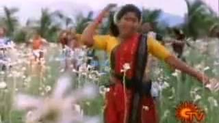 Tamil Movie Song   Aranmanai Kili   Adi Poonguyile