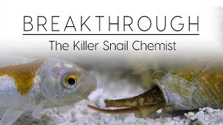Breakthrough: The Killer Snail Chemist