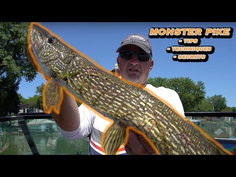 Summer Pike Fishing Tips