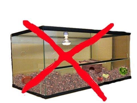 warum ist ein terrarium nicht f r schildkr ten europ ische arten geeignet youtube. Black Bedroom Furniture Sets. Home Design Ideas