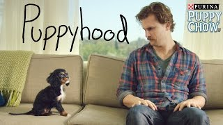 Puppyhood(This man found a soulmate in a puppy and it's adorable. Grow up right from the first bite. Visit https://puppyhood.com/ for all things puppy. Music by Brooms ..., 2015-05-29T18:01:17.000Z)