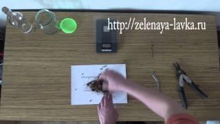 Приготовление настойки из струи бобра(В данном видео наглядно показан процесс приготовления настойки струи бобра на водке. 1. Для начала необходи..., 2014-03-24T03:58:44.000Z)