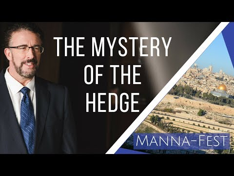 The Mystery of the Hedge | Episode 871