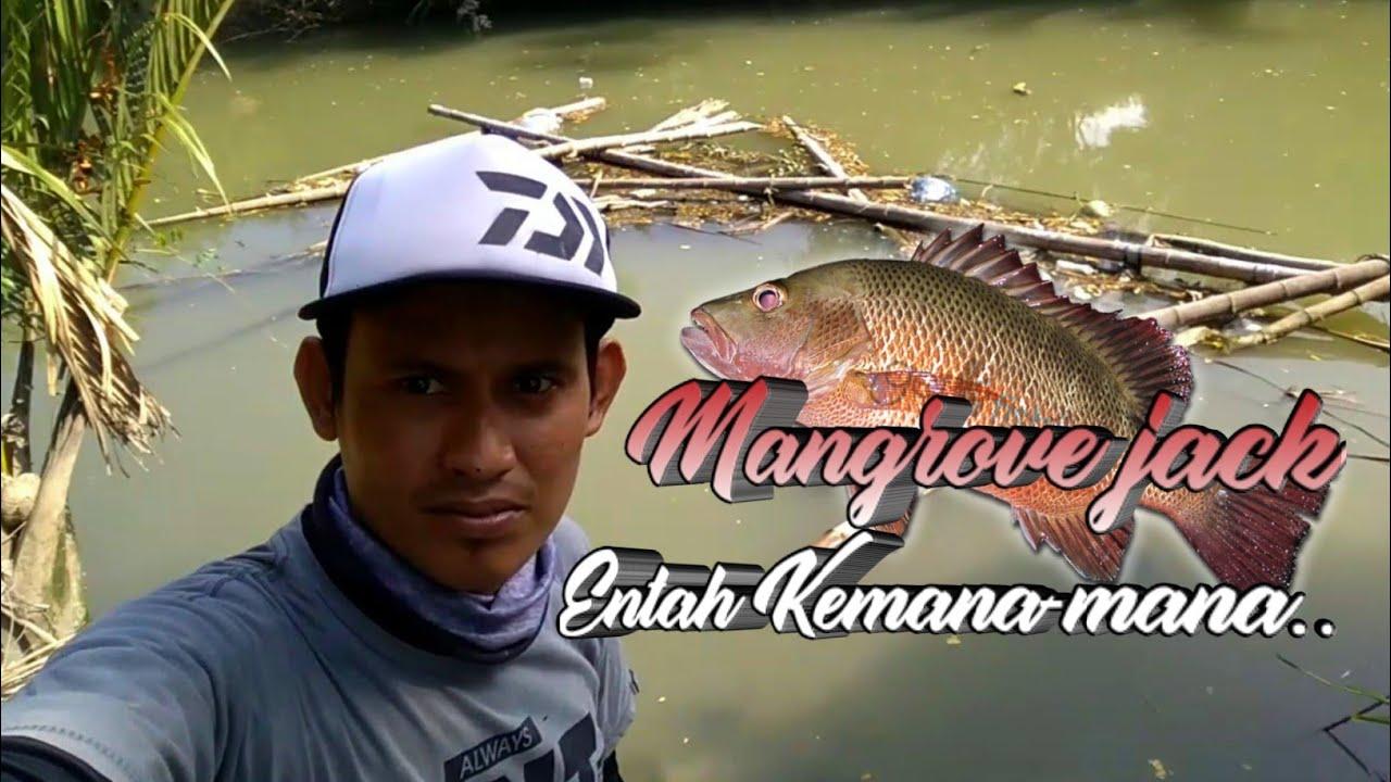 Spot Mancing Sungai Banyuwangi