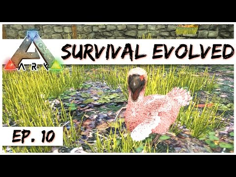Ark Survival Evolved - Ep. 10 - The Pink Dodo! - Gameplay - Let's Play